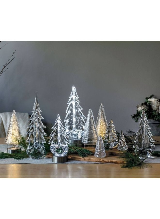 Five Sided Evergreen, 6ʺ (Gift Boxed)
