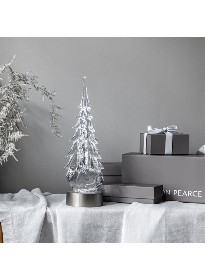 """Five Sided Evergreen, 14"""" (Gift Boxed)"""
