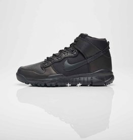 nike sb sb dunk high boot
