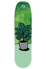 transportation unit get planted 8.5 deck