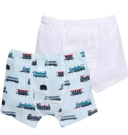 Grovia Unders Underwear Trains 2T