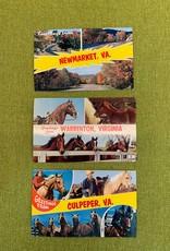 Vintage Virginia Tourism Postcard