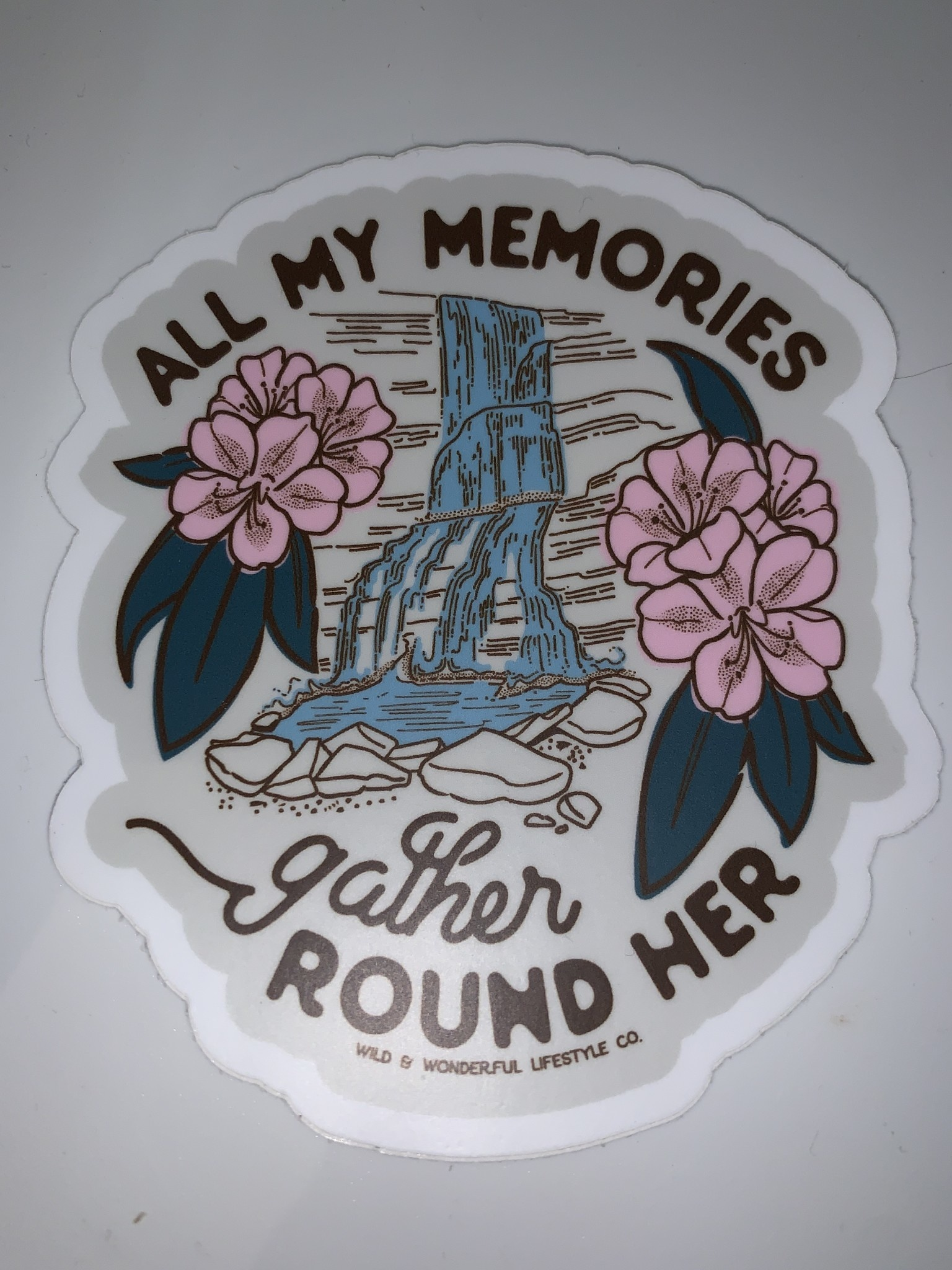 Wild & Wonderful Lifestyle Company WV All My Memories Waterfall Sticker