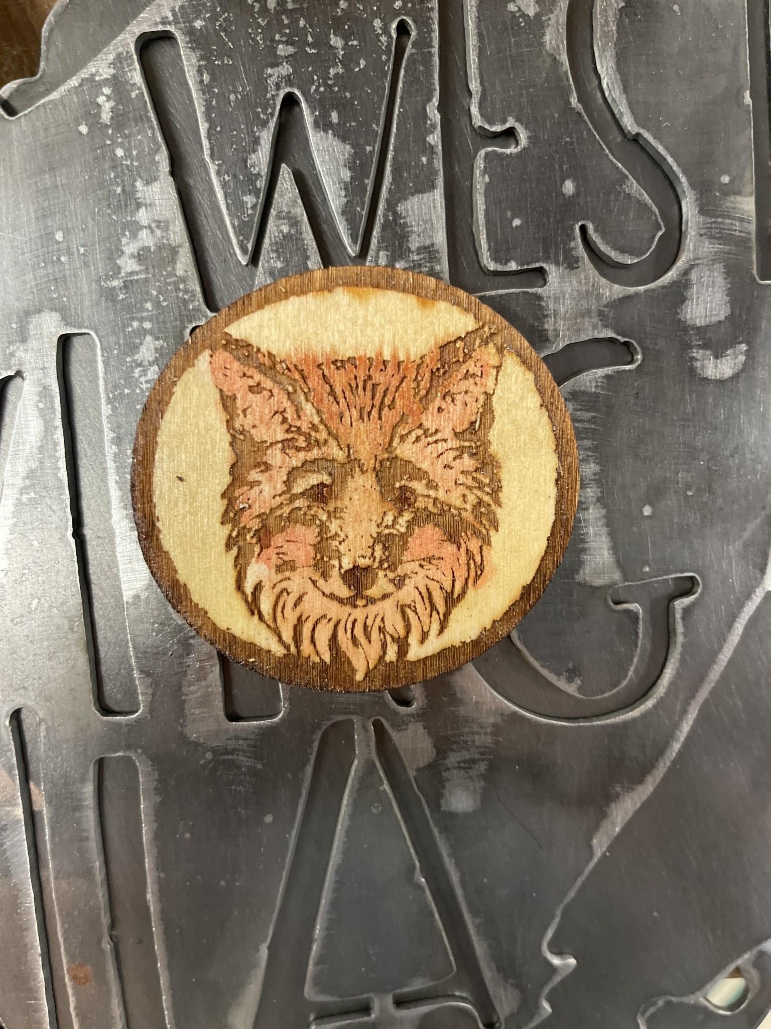 Bobcat- Local Wildlife Magnets