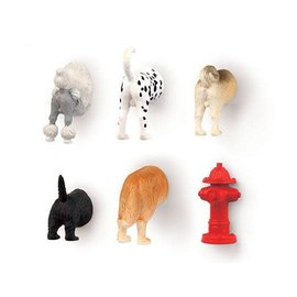 Kikkerland Dog Butt Magnets set/6
