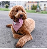 The Foggy Dog Heathered Cranberry Flannel Bandana