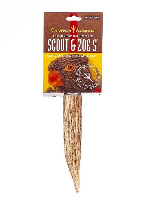 Scout & Zoe's Avian Antler Perch