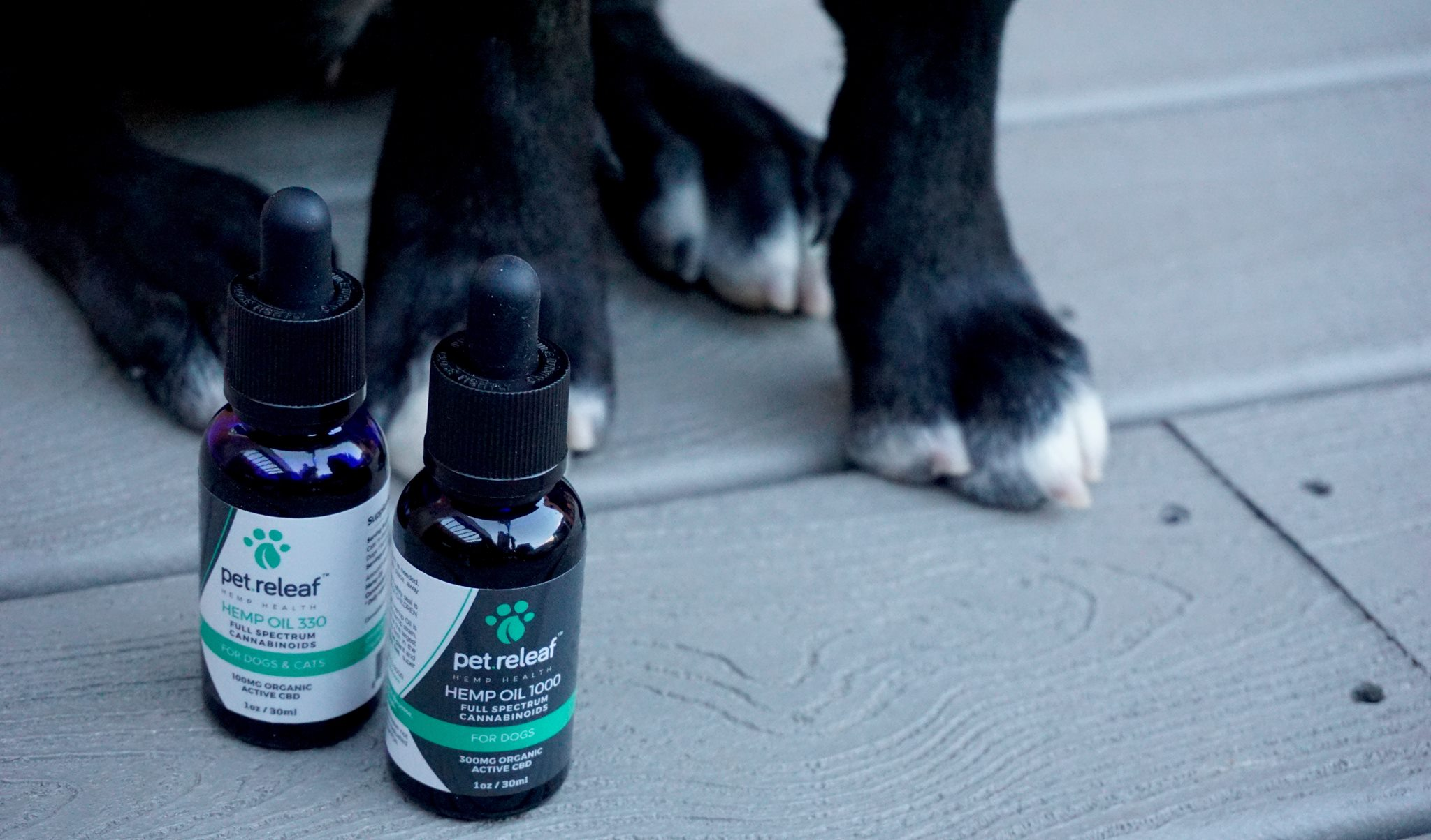 Shop Feed Pet Purveyor for Pet Releaf USDA Organic CBD oil for dogs and cats