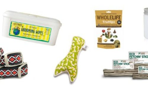 The Adventure Dog: Gifts for the active canine