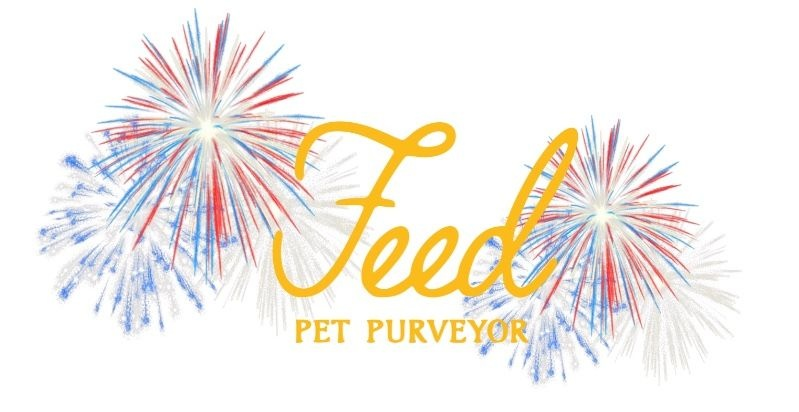 Fourth of July: Celebrating with your Pets
