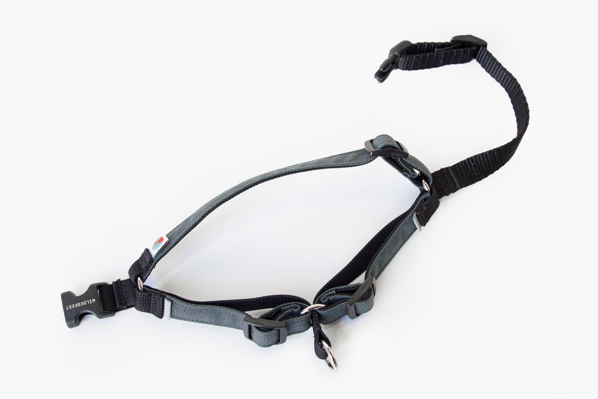 Linden No Pull Dog Harness