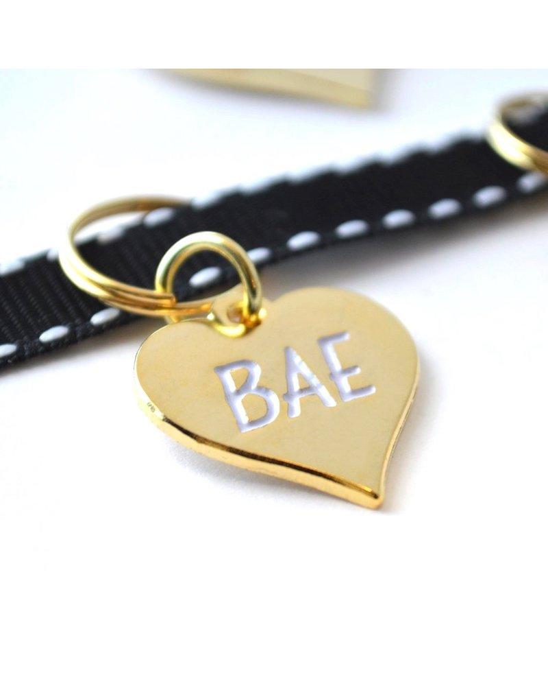Pet Tag, Bae