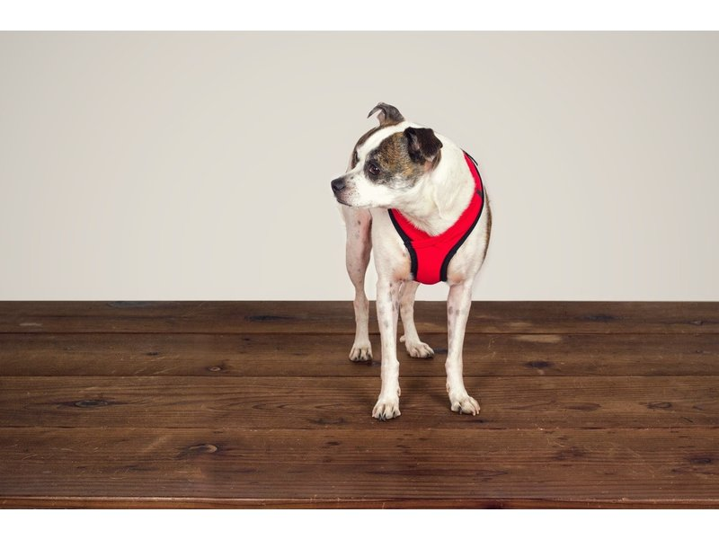 Wildebeest Laguna Soft Fit Dog Harness - Red