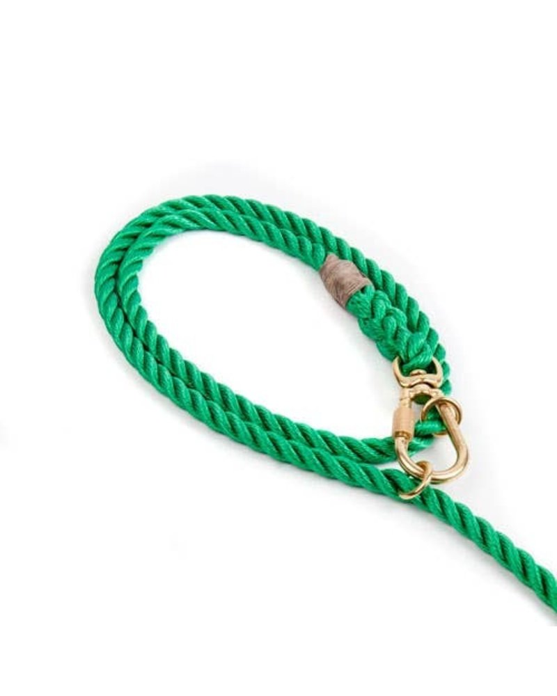 Found My Animal Adjustable Miami Green Rope Dog Leash