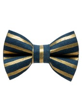 Sweet Pickles Designs Bow-Tie, Powerhouse Gold Stripe