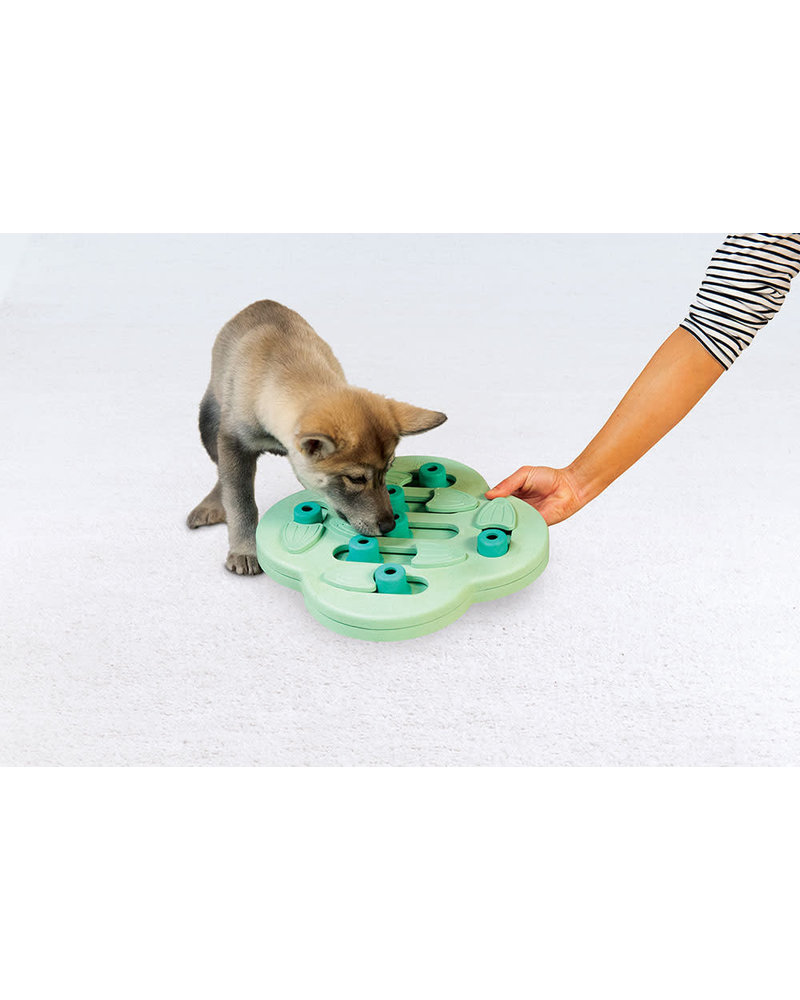 Nina Ottosson Puppy Hide N Slide Puzzle