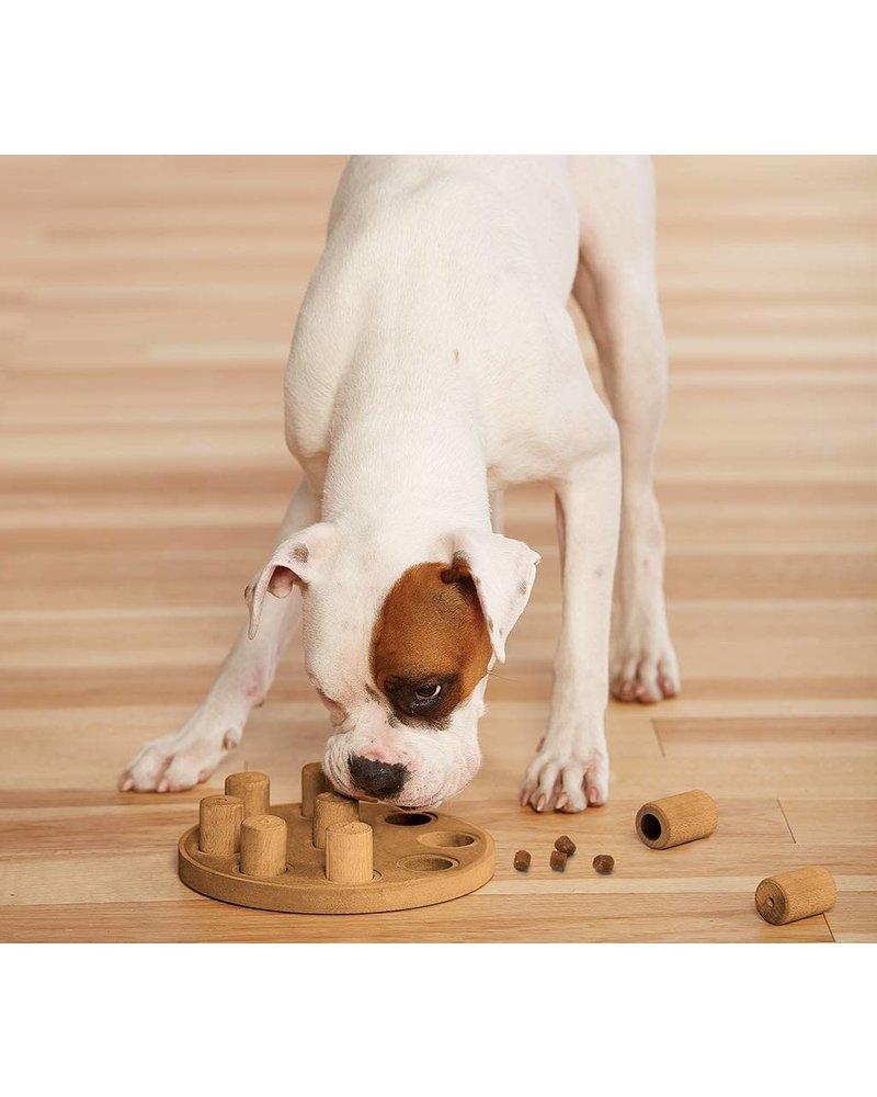 Nina Ottosson Dog Smart Puzzle