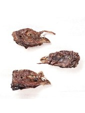 FEED Turkey Head