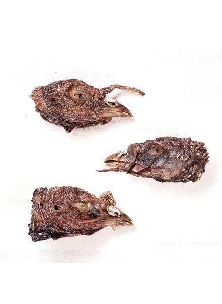 Farm Hounds Turkey Head