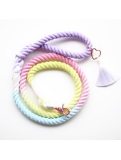 Ripley & Rue Rainbow Remix Rope Leash