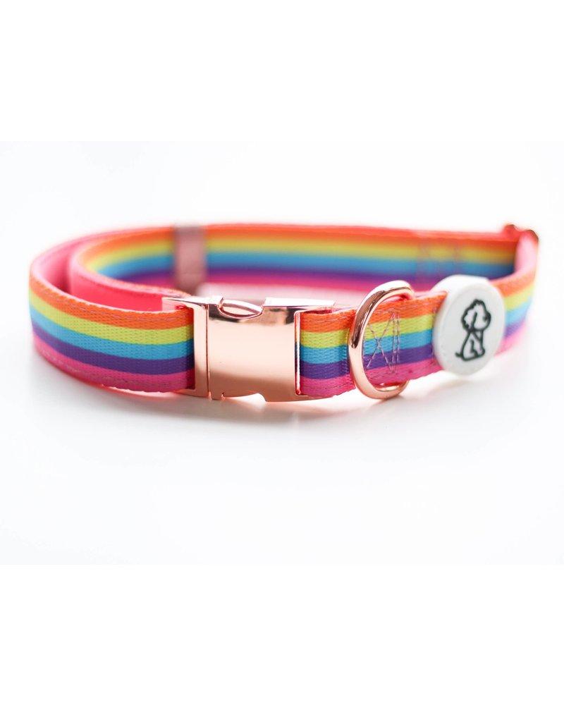 Ripley & Rue Rainbow Remix Collar