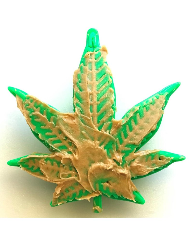 SodaPup Colorado Maple Leaf Tough Toy for Heavy Chewers