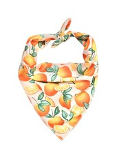 Hounds and Honeys Oranges Bandana