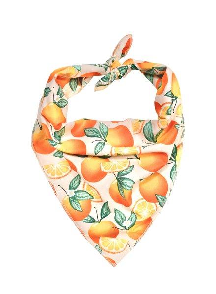 Hounds and Honeys Oranges Bandana