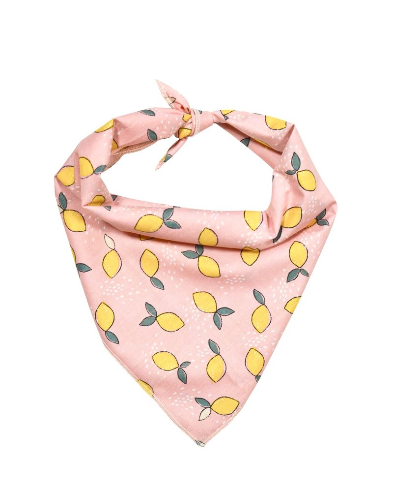 Hounds and Honeys Pink Lemonade Bandana