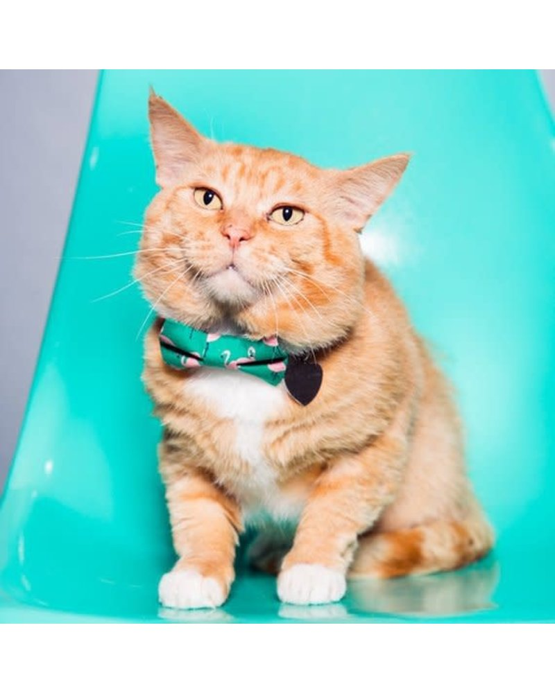 Sweet Pickles Designs Bow-Tie, Green Flamingo