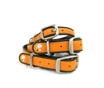 Dublin Dog Waterproof Collar