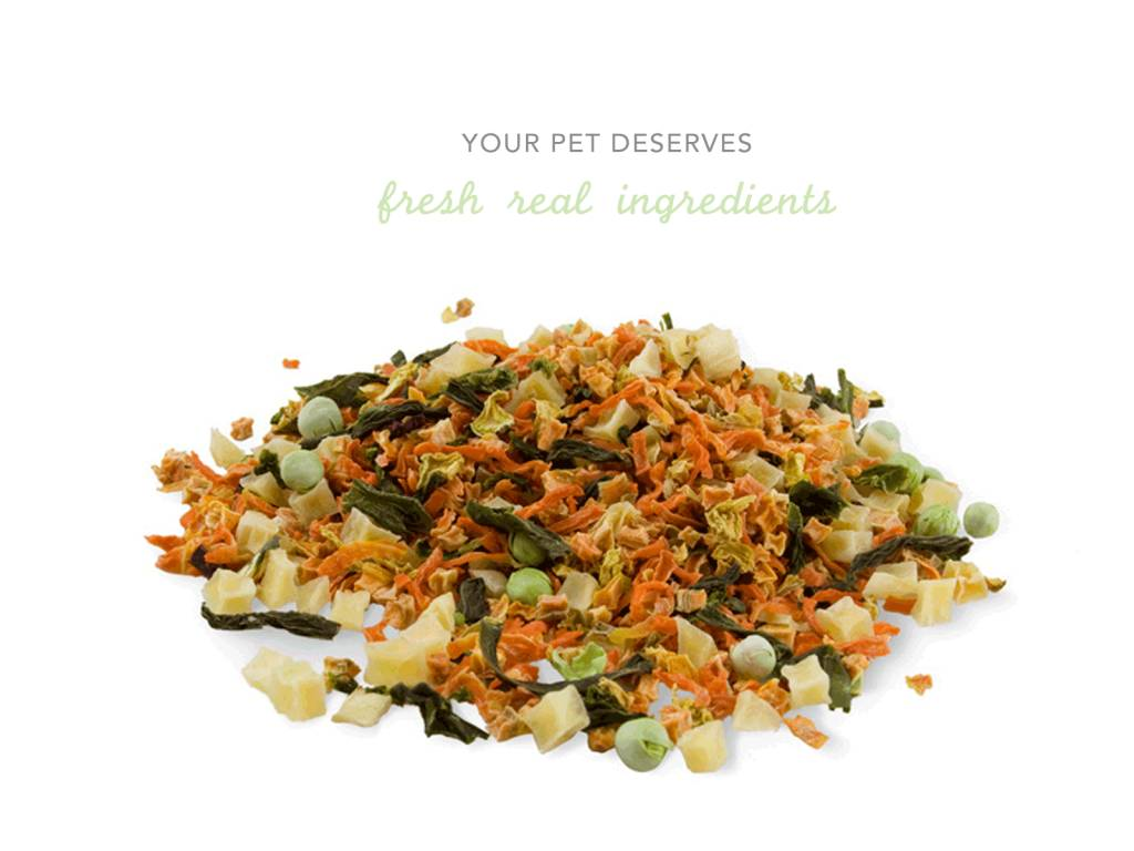 Top 4 Reasons You And Your Pet Will Love Freeze-Dried Food