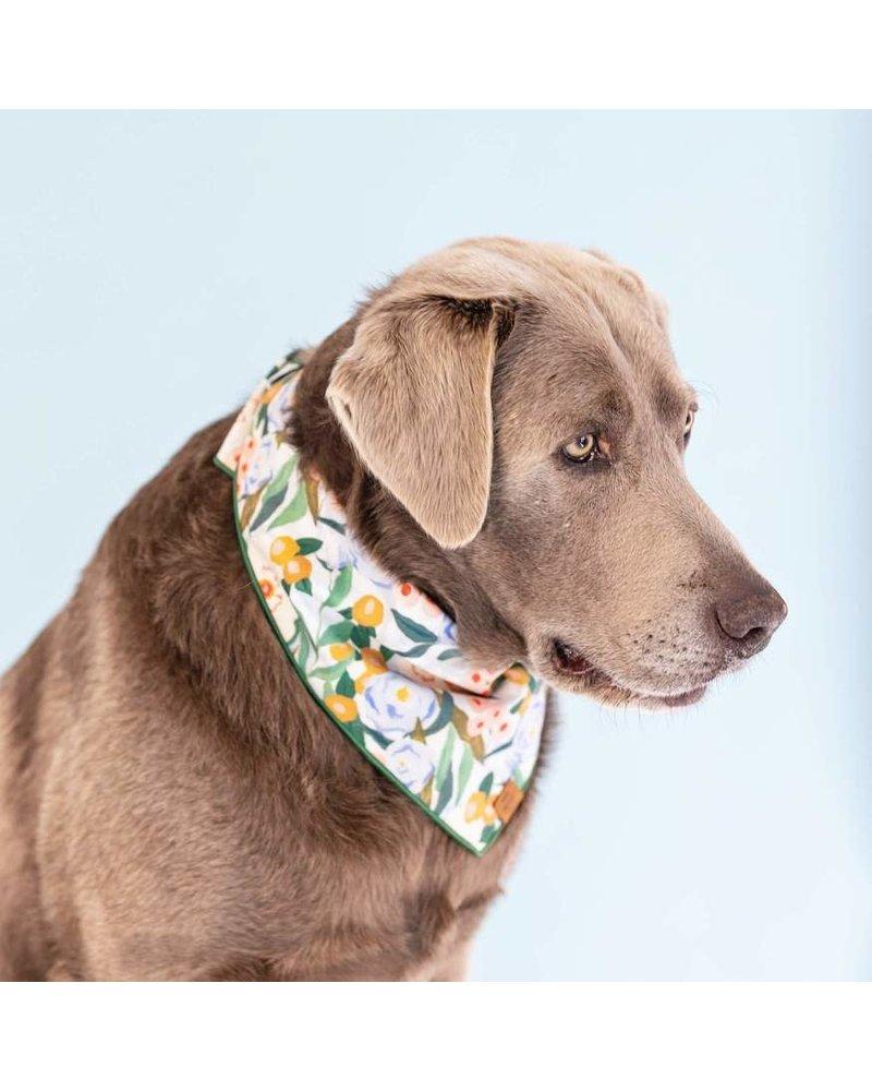 The Foggy Dog Gathered Floral Bandana