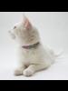 Hiro + Wolf Nebula Cat Collar