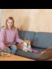 Hiro + Wolf Nebula 'Cafe' Leash