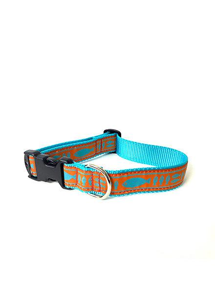Preston Orange & Turquoise Batik Fish Collar