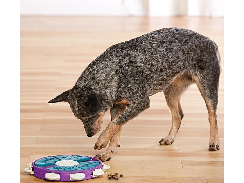 Twister Dog Puzzle