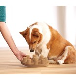 Nina Ottosson Dog Smart Puzzle, Composite