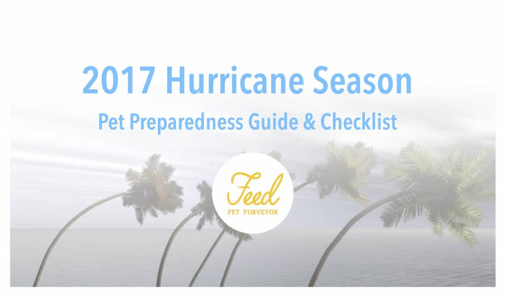 2017 Hurricane Preparedness Guide