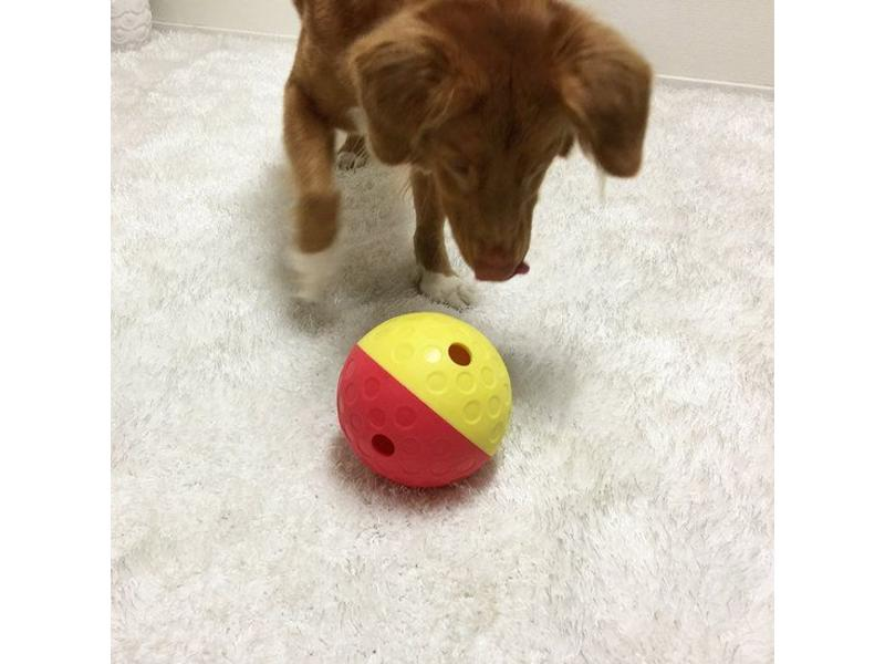 Nina Ottosson Treat Tumble Puzzle, Big Dog