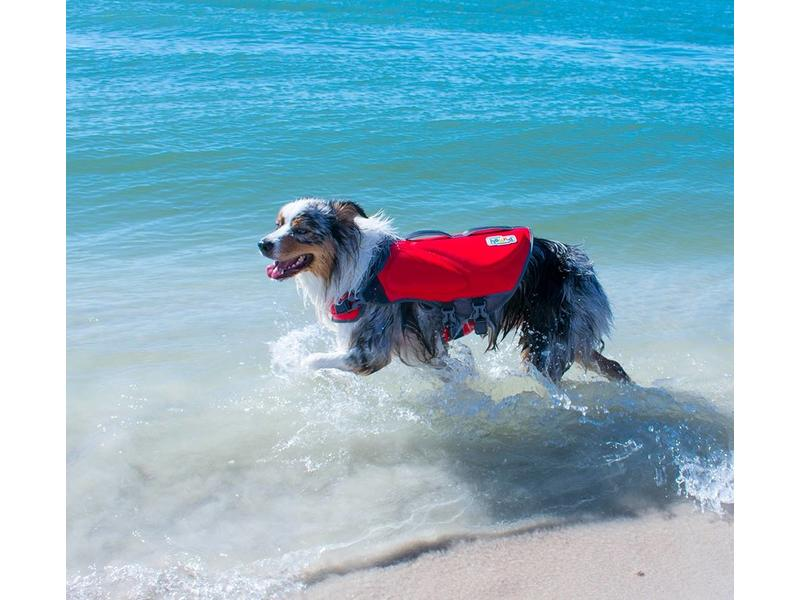 Dawson Swim Life Jacket