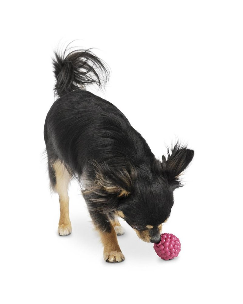Planet Dog Orbee-Tuff Raspberry Toy