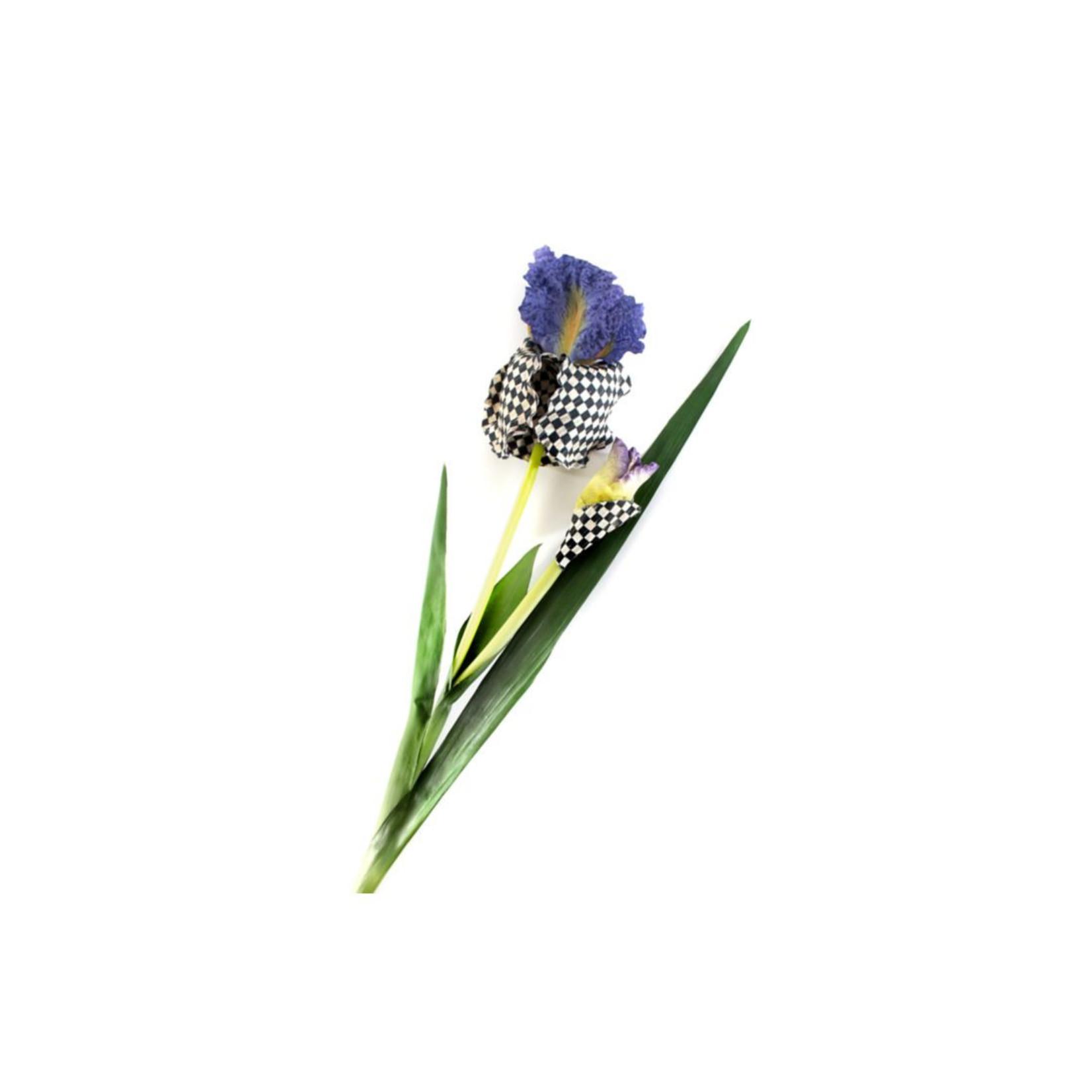 MacKenzie Childs Courtly Check Iris - Purple