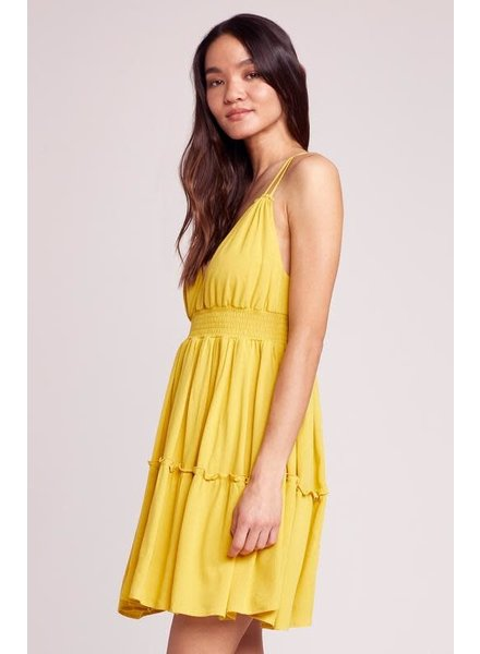 BB Dakota Steal My Sunshine Dress