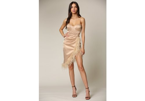 Blithe Ruffle Some Feathers Dress