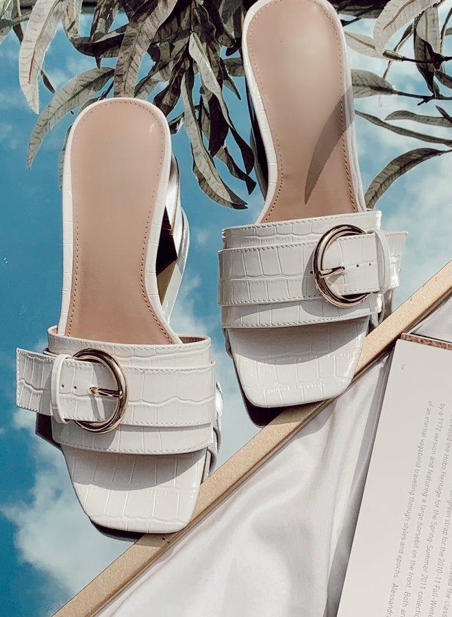 Angel Slides