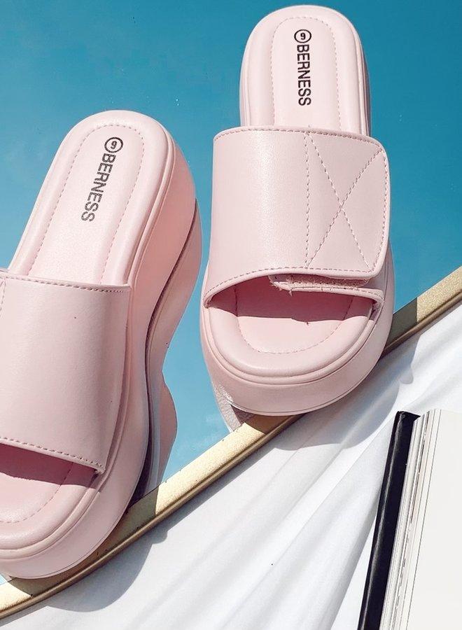 Penelope Platform Slides