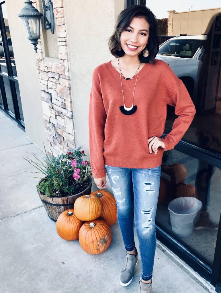 Brick V-Neck Pullover Sweater