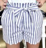 Light Blue Stripe Spring Shorts
