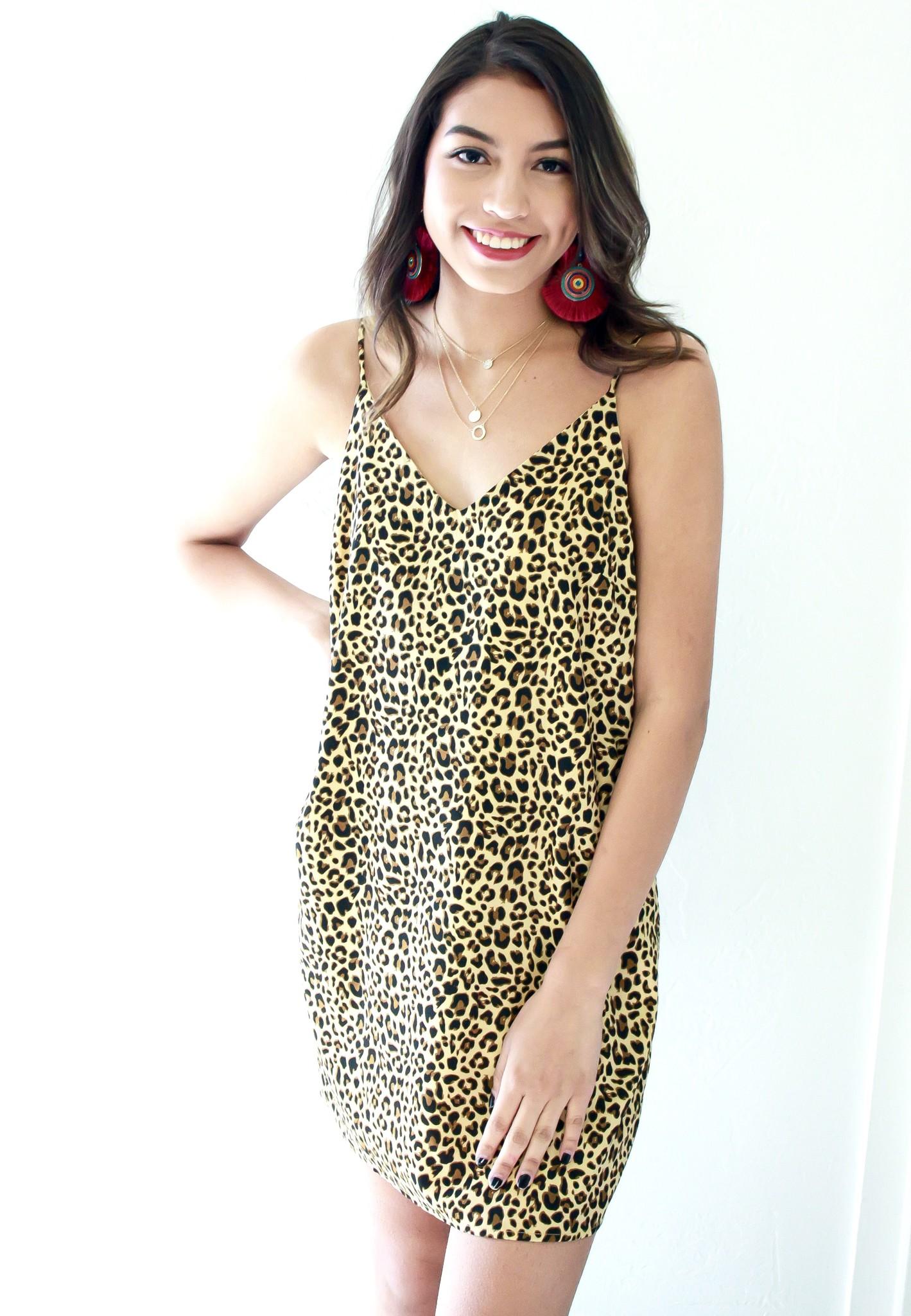 Brown Leopard Satin Dress